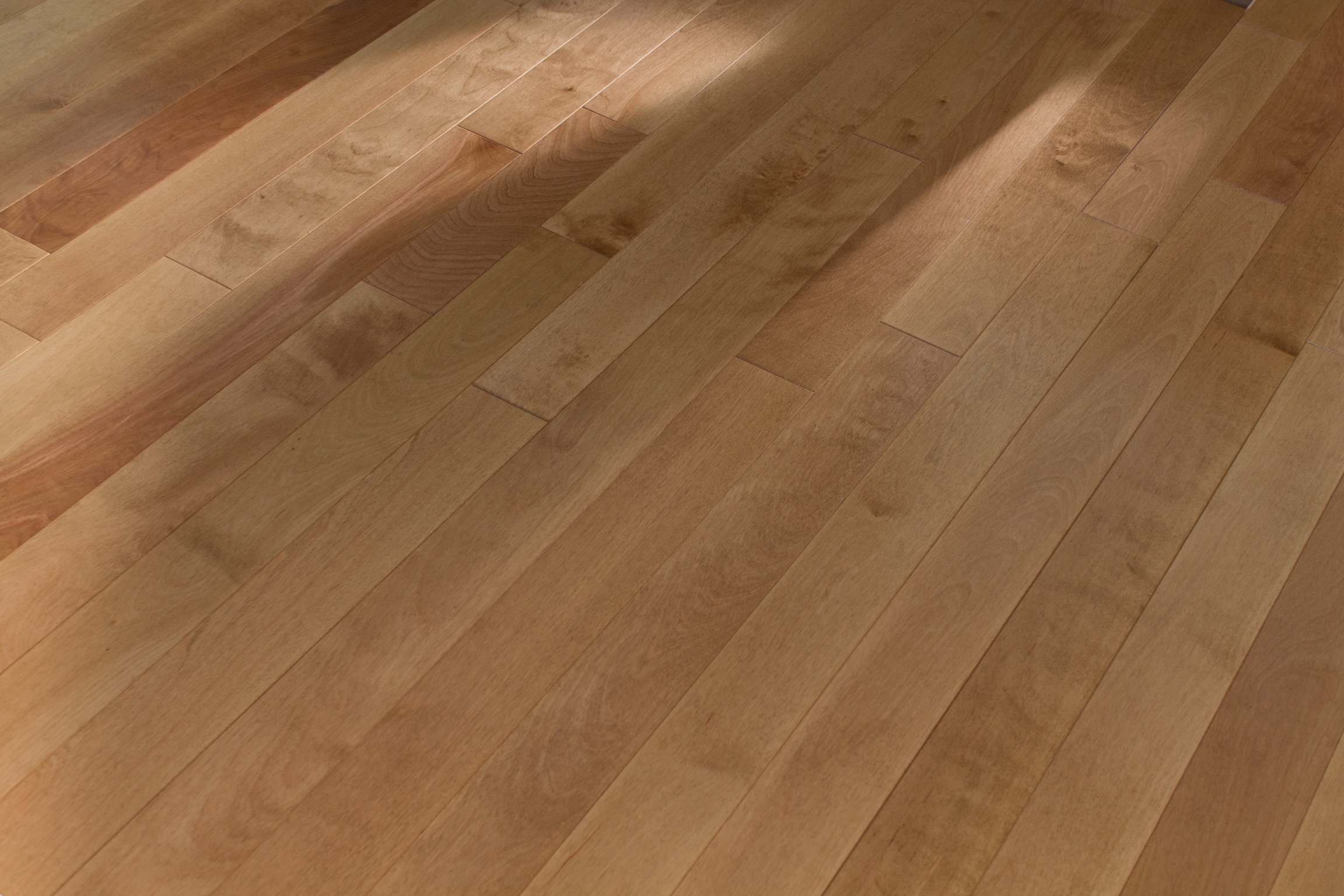 Our Borealis Floor Is A Great Example Of Birch Yellow Found Mostly In The Southeastern Part Canada And Northeastern United States