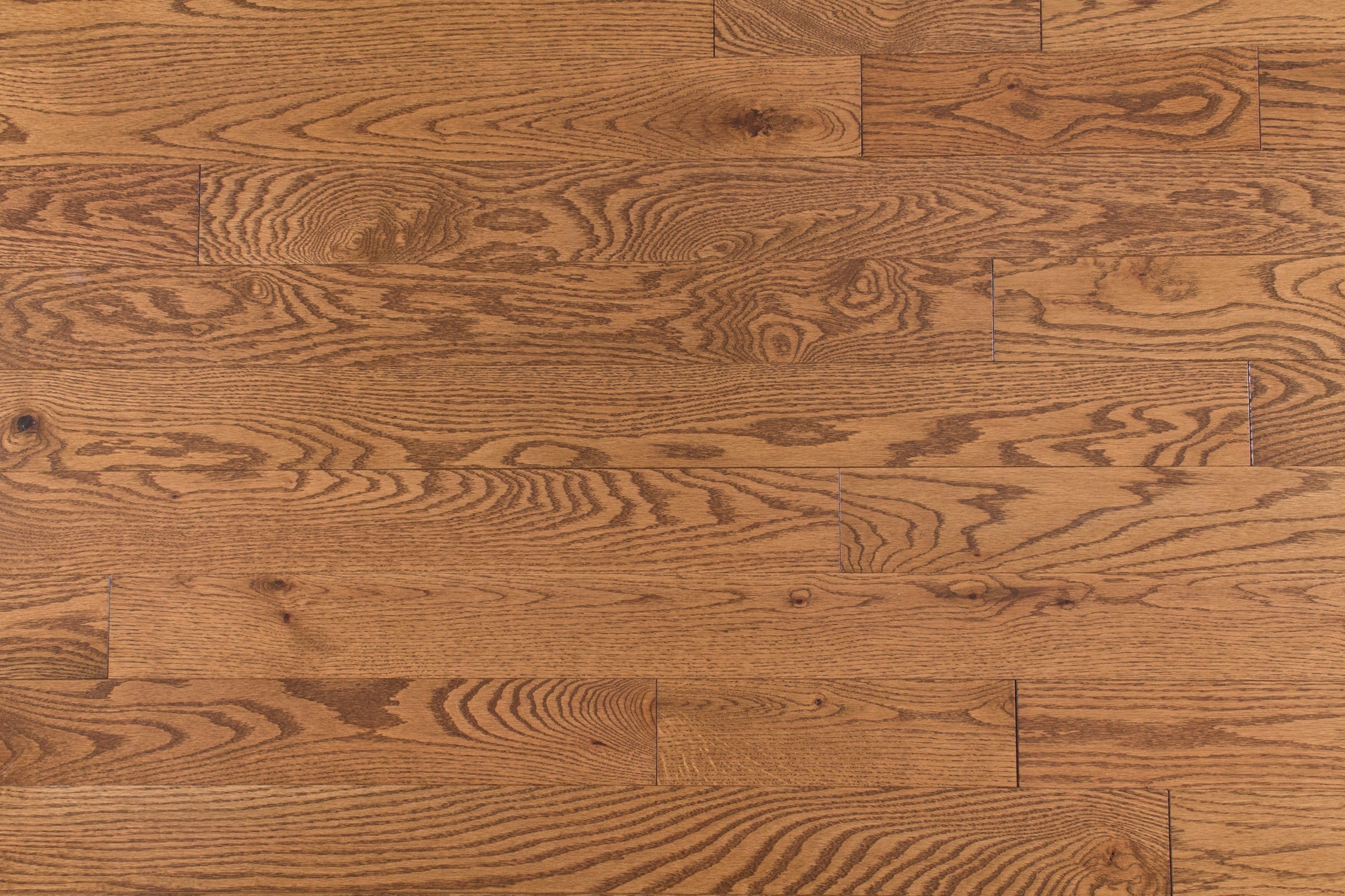 The Hidden Trail Collection Beacon Solid Red Oak